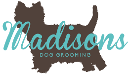 Madisons Dog Grooming